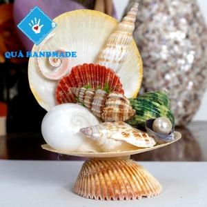 Chén sò ốc biển